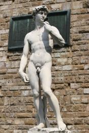 David de Michelange, Piazza della Signoria